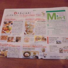 地域情報誌 Mint おいてます。