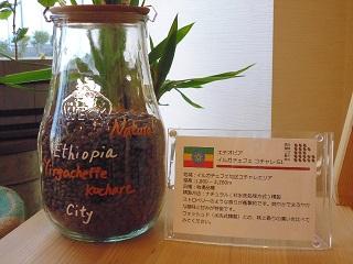 完売しました! 4月の限定豆「エチオピア イルガチェフェ ナチュラル」【味比べ】