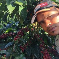 冬の限定豆 ドミニカ共和国 ドン・ペペ ワイニーナチュラル